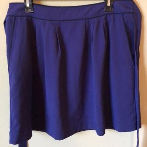 Banana Republic Blue Mini Skirt